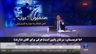 مجری عرب: حمایت از فلسطین را از ایران یاد بگیرید