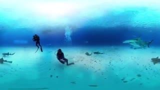 گشت و گذار در دل اقیانوس
