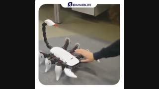 ربات های الهام گرفته شده از خلق و خوی حیوانات