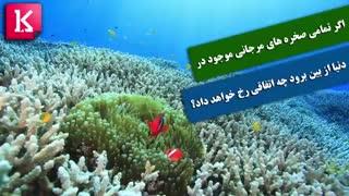 اگر تمامی صخره های مرجانی موجود در دنیا از بین برود چه اتفاقی رخ خواهد داد؟