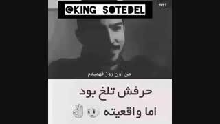 ویدیو+..