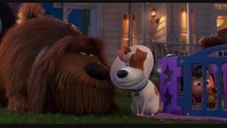 دانلود انیمیشن کمدی ماجراجویی زندگی مخفی حیوانات  قسمت دوم The Secret Life of Pets 2 2019 - با زیرنویس چسبیده