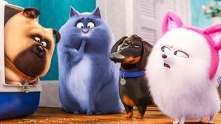 انیمیشن The Secret Life of Pets 2 محصول ۲۰۱۹ با زیرنویس فارسی