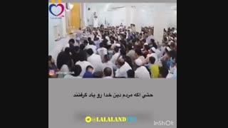 شیخ پردل