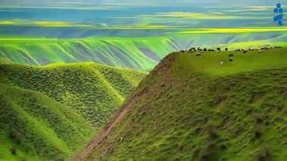 ترکمن صحرا, بوم نقاشی در شمال ایران