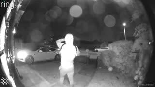 سرقت خودروی تسلا در کمتر از 30 ثانیه - گجت نیوز