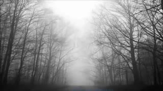آهنگ Echo از Jason Walker