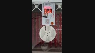 دستگاه جوجه کشی کوچک 48 تایی