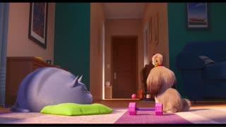دانلود انیمیشن زندگی خصوصی حیوانات 2 (2019) با زیرنویس چسبیده فارسی(hardsub) و دوبله فارسی