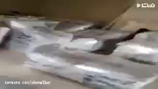 بسته بندی اثاثیه منزل با باربری تهران 44754478