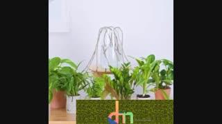 روش هایی برای رشد زودتر گیاهان
