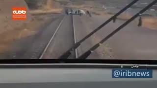 ترمز به موقع لکوموتیوران و جلوگیری از برخورد قطار با خودروی سواری در خط آهن رشت-قزوین