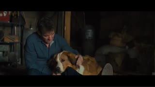 فیلم امریکایی سفر یک سگ A Dog's Journey با زیرنویس فارسی