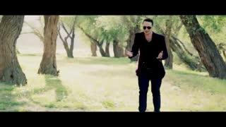 موزیک ویدیو فوق العاده عطا رادفر به نام «دلم» کردی