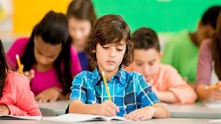 موفقیت در مدرسه چقدر در موفقیت زندگی تاثیرگذار است؟