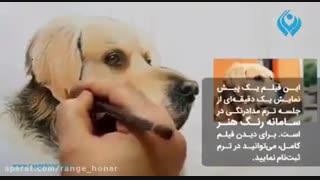 آموزش نقاشی از سگ با مدادرنگی
