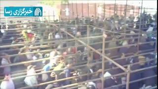 شور حسینی در مرز مهران