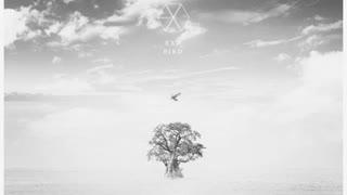 آهنگ bird از EXO -2019