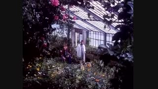 آواز زیبایی از فیلم دلشدگان (علی حاتمی1370 )