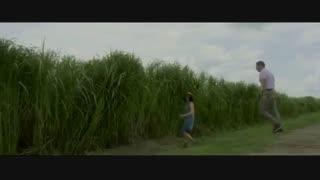 تماشای آنلاین فیلم ترسناک در علفزار بلند In The Tall Grass 2019 با زیرنویس چسبیده فارسی