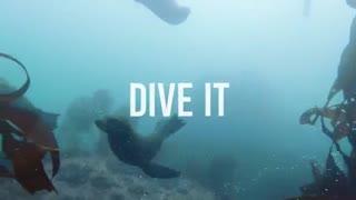 دوربین حرفه ای اسمواکشن dji،اجاره دوربین های فیلمبرداری اکشن،فیلمبرداری زیر آب