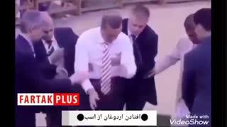وقتی اردوغان از اسب میافتد