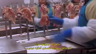مستند خوردن حیوانات با زیرنویس فارسی