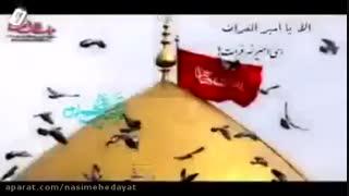 اربعین حسینی تسلیت باد (قدمهای جابر میثم مطیعی)