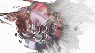 من غلام نوکراتم عاشق کربلاتم_محمد حسین پویانفر