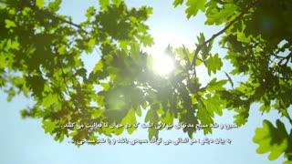 آشنایی با مفهوم وضعیت درخت پاک و ناپاک روح