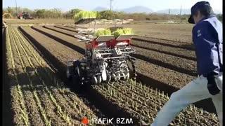 عجیبترین های دنیای کشاورزی
