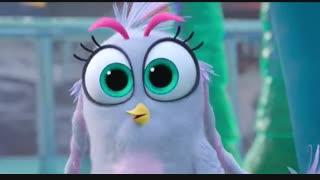 دانلود انیمیشن پرندگان خشمگین قسمت دوم The Angry Birds 2 2019-دوبله حرفه ای