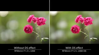 معرفی لنز Canon RF 85mm F1.2 L USM DS