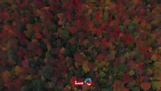 تماشای پادشاه فصل ها ، پاییز رنگارنگ