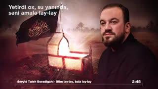 بالام لای لای علی لای لای - مداحی زیبای سیدطالع باکویی برای علی اصغر ع