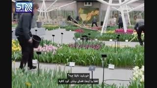 ارتباط برقرار کردن با گل ها در هلند