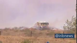 تصاویری از فرار کانگوروها از آتش سوزی در استرالیا