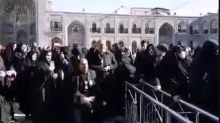 بیتابیهای عاشقانه زائران، پشت پنجره فولاد امام رضا علیهالسلام