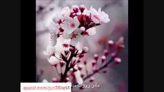 روز مادر مبارک/ترانه روز مادر/موسسه اجاره دوربین در تهرا