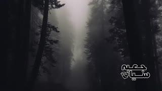 پنج ویدئوی مرموز و ترسناک ضبط شده در تاریخ ( قسمت دوم )