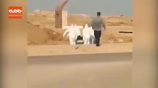 دفن جسد بیمار مبتلا به کرونا