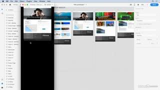 آموزش طراحی وایرفریم یک سایت وردپرسی در ایکس دی ⭐️