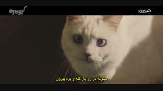 قسمت1و2 سریال خوش اومدی (میو پسر اسرارآمیز) +زیرنویس چسبیده(درخواستی، پیشنهادی) Welcome/Meow, the Secret Boy