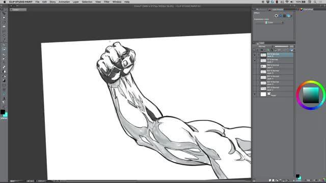 آموزش طراحی عضلات بازو و ساعد دست